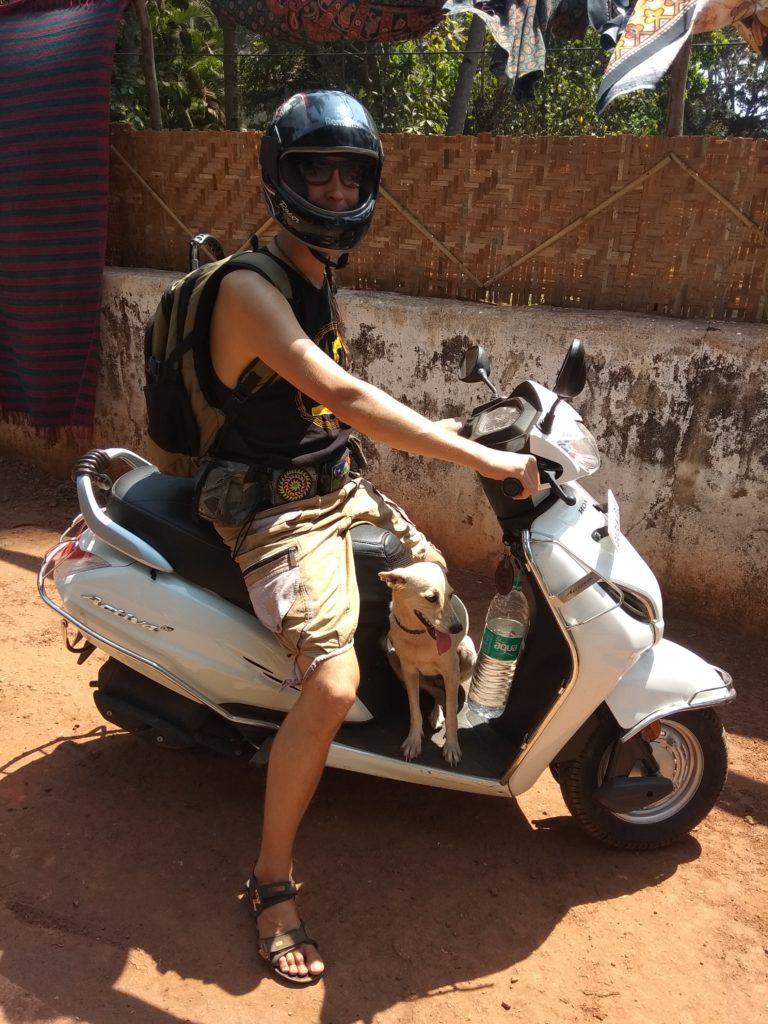 скутер собака Гоа