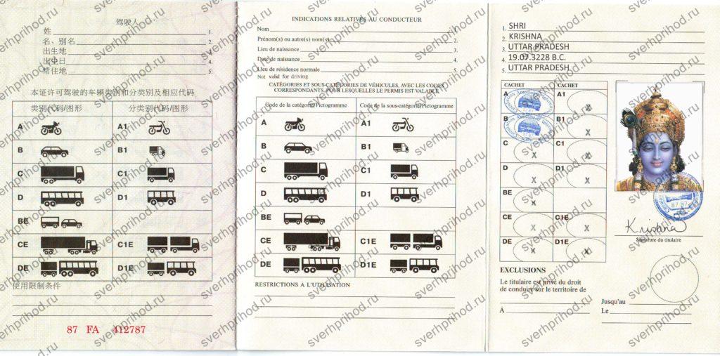 copy of international driving license